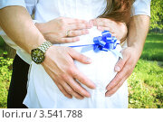 Живот беременной женщины с руками и бантом. Стоковое фото, фотограф Эльмира Капкаева / Фотобанк Лори