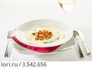 Купить «Сливочный суп с чесноком, шпинатом и сухариками», фото № 3542656, снято 17 апреля 2012 г. (c) CandyBox Images / Фотобанк Лори