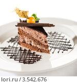 Купить «Кусок шоколадного торта с физалисом на белой тарелке», фото № 3542676, снято 17 апреля 2012 г. (c) CandyBox Images / Фотобанк Лори