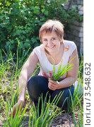 Купить «Улыбающаяся женщина с зеленым луком в огороде», фото № 3548632, снято 26 мая 2012 г. (c) Майя Крученкова / Фотобанк Лори