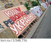 Купить «Плакаты в поддержку Юлии Тимошенко. Киев», фото № 3548716, снято 26 мая 2012 г. (c) FMRU / Фотобанк Лори