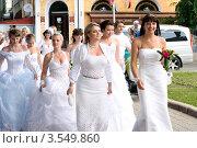 Марш (парад) невест 2012. Полтава, Украина. Редакционное фото, фотограф Сергей Гнилосыр / Фотобанк Лори