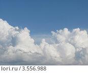 Купить «Белоснежные кучевые облака на голубом небе», фото № 3556988, снято 19 мая 2012 г. (c) Ирина Водяник / Фотобанк Лори