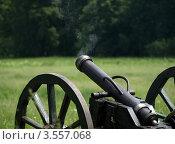 Купить «Пушка после выстрела», фото № 3557068, снято 27 мая 2012 г. (c) Сергей Юрьев / Фотобанк Лори