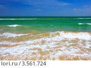 Купить «Песчаный морской пляж летом», фото № 3561724, снято 28 мая 2012 г. (c) Sea Wave / Фотобанк Лори