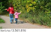 Купить «Молодая женщина с кленовыми листьями в руках с маленькой девочкой бегут по осеннему парку», видеоролик № 3561816, снято 11 декабря 2009 г. (c) Losevsky Pavel / Фотобанк Лори