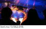 Купить «Вид из зрительного зала на цирковое представление», видеоролик № 3562016, снято 25 декабря 2009 г. (c) Losevsky Pavel / Фотобанк Лори