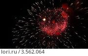 Купить «Яркий фейерверк в ночном небе», видеоролик № 3562064, снято 9 декабря 2009 г. (c) Losevsky Pavel / Фотобанк Лори