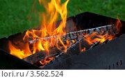 Купить «Угли догорают в мангале», видеоролик № 3562524, снято 18 ноября 2009 г. (c) Losevsky Pavel / Фотобанк Лори