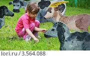 Купить «Девочка на лужайке с игрушечными разрисованными домашними животными», видеоролик № 3564088, снято 27 февраля 2010 г. (c) Losevsky Pavel / Фотобанк Лори