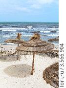 Купить «Пляжные зонтики, сделанные из пальмовых листьев около моря», фото № 3566904, снято 1 мая 2012 г. (c) Кекяляйнен Андрей / Фотобанк Лори
