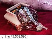 Купить «Шкатулка с драгоценностями», фото № 3568596, снято 12 мая 2012 г. (c) Инга Дудкина / Фотобанк Лори