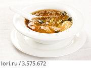 Купить «Суп с кунжутом», фото № 3575672, снято 12 февраля 2012 г. (c) Юлий Шик / Фотобанк Лори