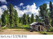 Купить «Деревянная хибара конюха. Горный Алтай», фото № 3578816, снято 19 июля 2011 г. (c) Евгений Захаров / Фотобанк Лори