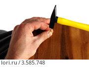 Купить «Мужчина забивает гвоздь», фото № 3585748, снято 10 февраля 2010 г. (c) Татьяна Белова / Фотобанк Лори
