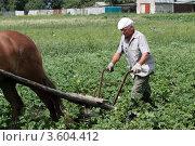 Купить «Пахарь», эксклюзивное фото № 3604412, снято 9 июля 2011 г. (c) Дмитрий Неумоин / Фотобанк Лори