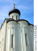 Купить «Церковь Покрова на Нерли», фото № 3610820, снято 7 июня 2011 г. (c) ElenArt / Фотобанк Лори