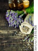 Купить «Натюрморт со свежими и сухими цветами лаванды», фото № 3610908, снято 31 мая 2012 г. (c) Наталия Кленова / Фотобанк Лори