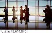 Купить «Деловые люди в офисе», фото № 3614840, снято 21 августа 2018 г. (c) Константин Юганов / Фотобанк Лори