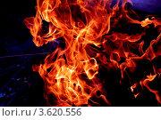Огонь. Стоковое фото, фотограф Анастасия Новикова / Фотобанк Лори