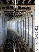 Отражение опор моста на водной глади. Стоковое фото, фотограф Эдуард Пашута / Фотобанк Лори