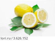 Спелый лимон с зелеными листьями. Стоковое фото, фотограф Gerasimova Inga / Фотобанк Лори