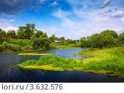 Купить «Сельский пейзаж с заросшим прудом», фото № 3632576, снято 30 мая 2012 г. (c) Яков Филимонов / Фотобанк Лори