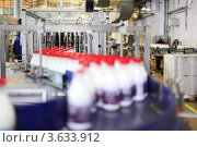 Купить «Конвейер с бутылками молока на заводе», фото № 3633912, снято 3 марта 2011 г. (c) Losevsky Pavel / Фотобанк Лори