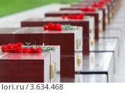 Купить «Памятник на могиле Неизвестного солдата в Александровском саду в День Победы», фото № 3634468, снято 8 мая 2011 г. (c) Losevsky Pavel / Фотобанк Лори