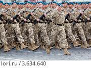 Купить «Парад на День Победы, Воздушно-десантные войска», фото № 3634640, снято 9 мая 2011 г. (c) Losevsky Pavel / Фотобанк Лори