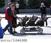 Тройня (2012 год). Редакционное фото, фотограф Виктор Филиппович Погонцев / Фотобанк Лори