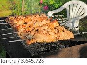 Купить «Шашлык на мангале», эксклюзивное фото № 3645728, снято 24 июня 2012 г. (c) Юрий Морозов / Фотобанк Лори