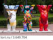 Три медведя Бадди (2012 год). Редакционное фото, фотограф Маргарита Волгина / Фотобанк Лори