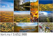 Купить «Осень в лесу», фото № 3652988, снято 19 июля 2019 г. (c) Владимир Мельников / Фотобанк Лори