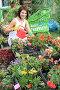 Девушка ландшафтный дизайнер за работой на в оранжерее загородного дома, фото № 3653048, снято 6 июля 2012 г. (c) Надежда Глазова / Фотобанк Лори