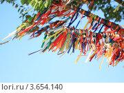Ленты на дереве (2012 год). Стоковое фото, фотограф Елена Корнеева / Фотобанк Лори