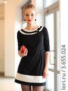 Купить «Красивая девушка в черном платье с красным клатчем», фото № 3655024, снято 29 января 2010 г. (c) Эдуард Стельмах / Фотобанк Лори