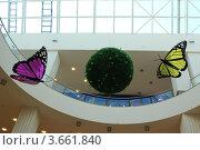 Бабочки  и шар (2012 год). Редакционное фото, фотограф Сергей Александров / Фотобанк Лори