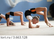 Купить «Художественная гимнастика, тренировка», эксклюзивное фото № 3663128, снято 10 июля 2012 г. (c) Дмитрий Неумоин / Фотобанк Лори