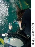 """Первый в мире TWEET, отправленный из под воды с мобильного телефона. Одесса, дельфинарий """"Немо"""" (2010 год). Редакционное фото, фотограф Некрасов Андрей / Фотобанк Лори"""