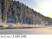 Зимний лес и река. Стоковое фото, фотограф Юлия Науменко / Фотобанк Лори