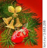 Красный кувшинчик и соломенные колокольчики на сосновой ветке. Стоковое фото, фотограф Лариса Кривошапка / Фотобанк Лори