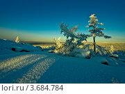 Купить «Фотография северной природы», фото № 3684784, снято 30 октября 2010 г. (c) Ахметсафин Руслан / Фотобанк Лори