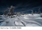 Купить «Фотография северной природы», фото № 3684944, снято 22 февраля 2010 г. (c) Ахметсафин Руслан / Фотобанк Лори