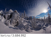 Купить «Фотография северной природы», фото № 3684992, снято 22 января 2011 г. (c) Ахметсафин Руслан / Фотобанк Лори