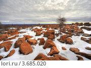 Купить «Фотография северной природы», фото № 3685020, снято 13 ноября 2019 г. (c) Ахметсафин Руслан / Фотобанк Лори