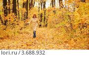 Купить «Женщина подбрасывает осенние листья в парке», видеоролик № 3688932, снято 15 марта 2010 г. (c) Losevsky Pavel / Фотобанк Лори