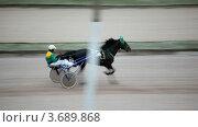 Купить «Жокеи в упряжке с лошадьми на скачках на ипподроме», видеоролик № 3689868, снято 2 апреля 2010 г. (c) Losevsky Pavel / Фотобанк Лори