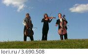 Купить «Музыканты играют на струнных инструментах», видеоролик № 3690508, снято 1 апреля 2010 г. (c) Losevsky Pavel / Фотобанк Лори