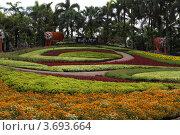 Тропический парк Нонг Нуч, Паттайя, Тайланд (2011 год). Редакционное фото, фотограф Рачия Арушанов / Фотобанк Лори